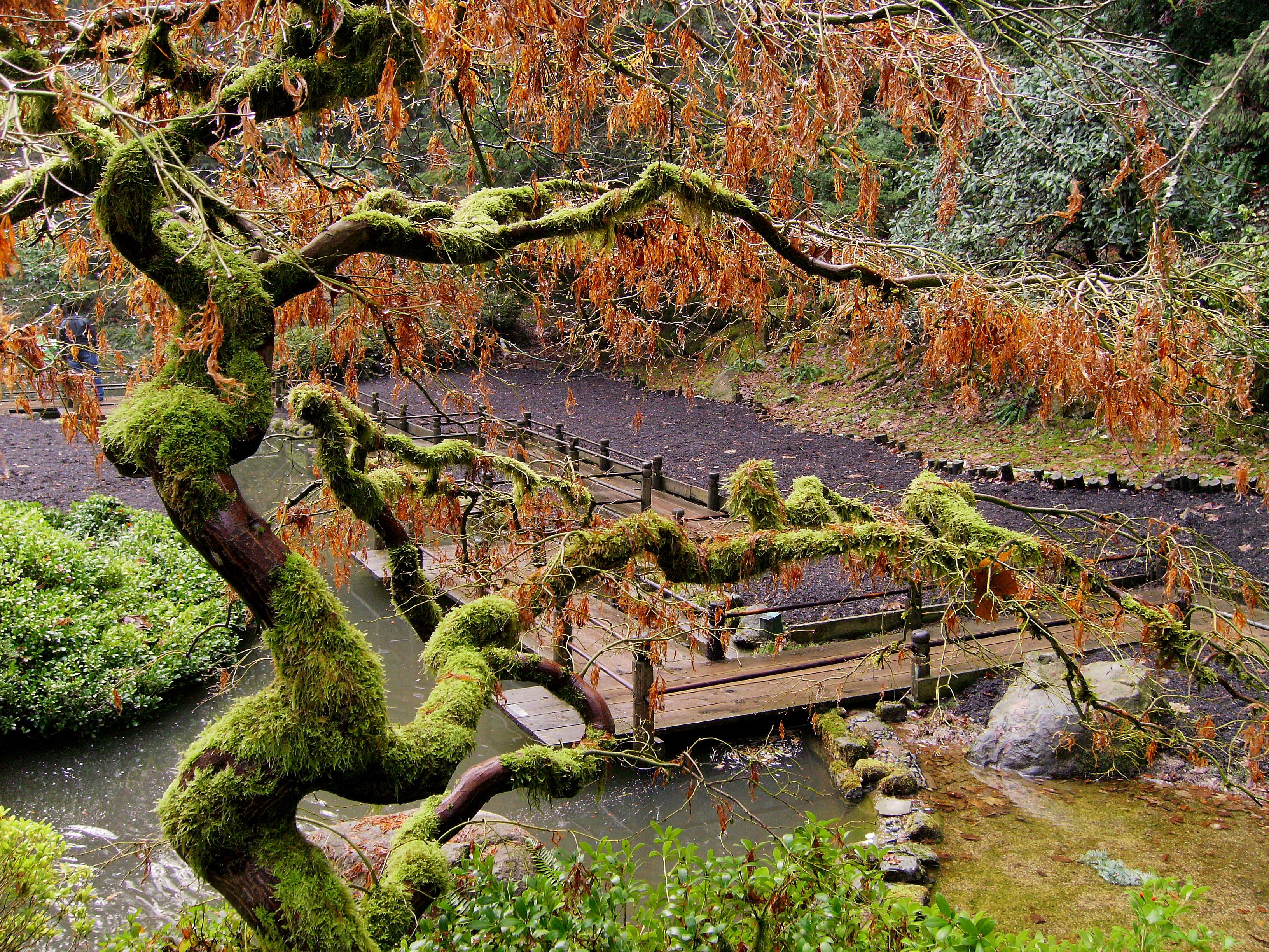 Portland Family Outdoors The Portland Japanese Garden Adam Sawyer