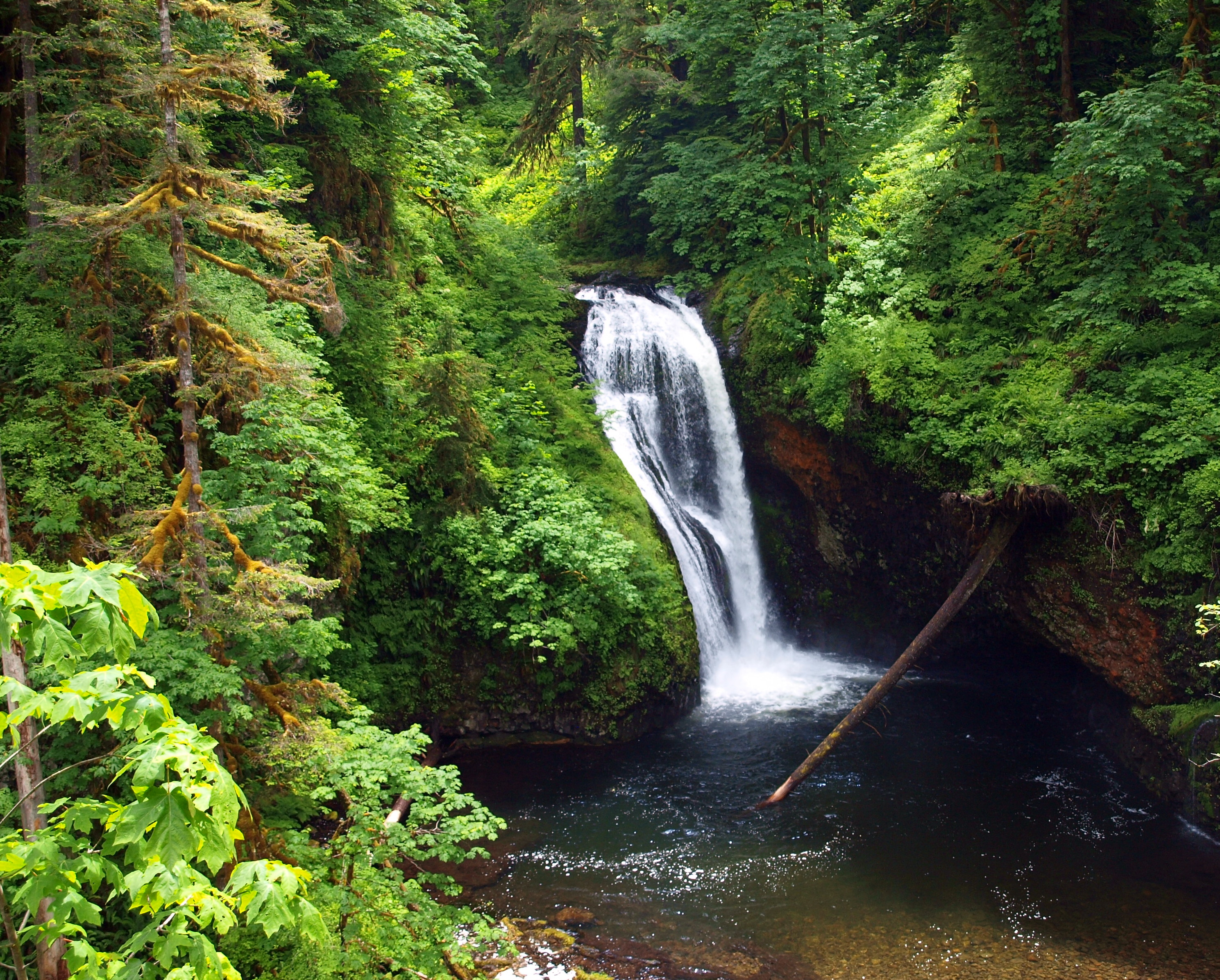 butte falls Hike description a little over an hour's drive from portland, this short hike will take you to two beautiful waterfalls in the foothills of the cascade mountains.